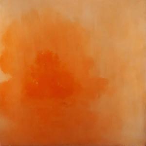MolluHeino Ohikulkeminen oranssi